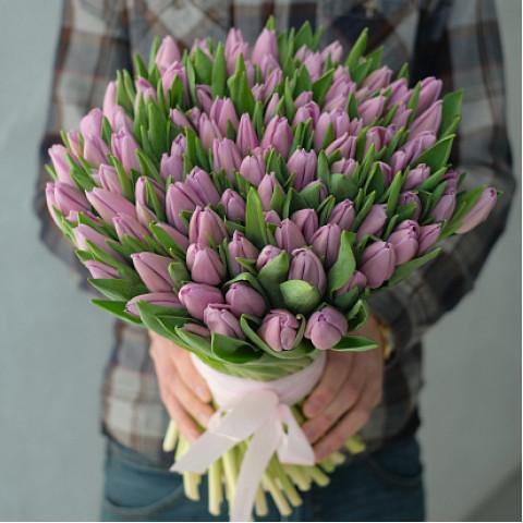 101 фиолетовый тюльпан