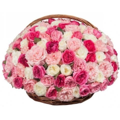 101 пионовидная роза в корзине