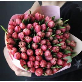 101 пионовидный тюльпан