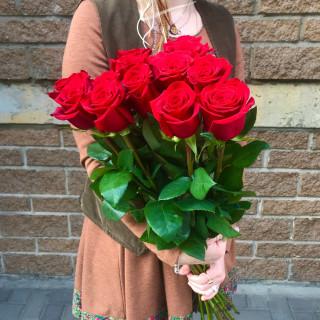 15 красных роз 70 см (Эквадор)