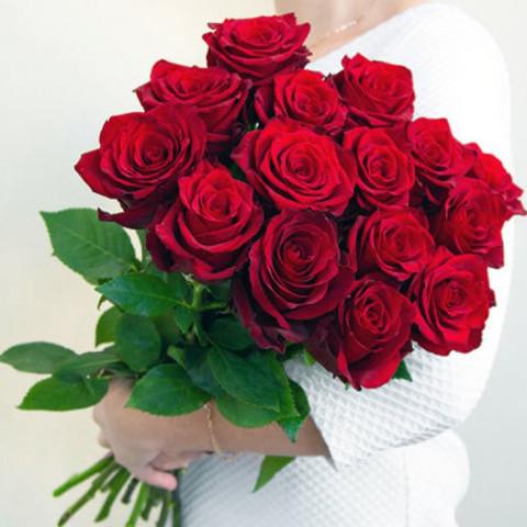 15 красных роз (Эквадор)
