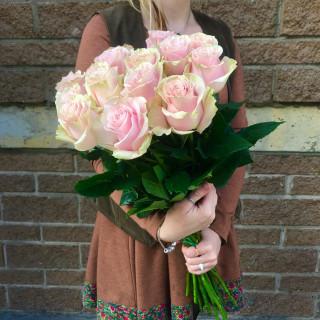 15 розовых роз 60 см (Эквадор)