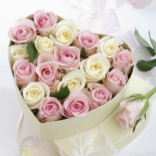 19 роз в коробке