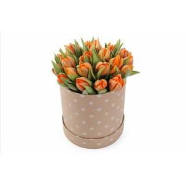 21 тюльпан в шляпной коробке
