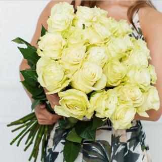 25 белых роз (Эквадор)