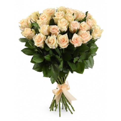 25 кремовых роз (Эквадор)