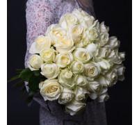 35 белых роз (Эквадор)