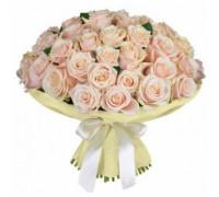 51 кремовая роза (Эквадор)