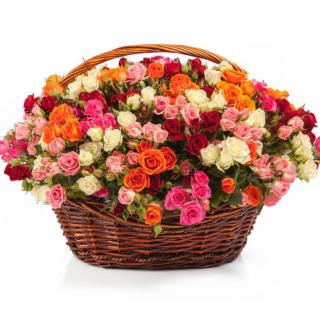 65 кустовых роз в корзине