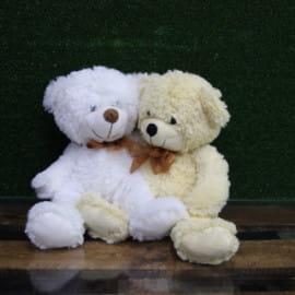 Медведь Энрико