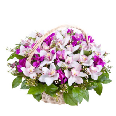 Поляна орхидей