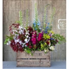 Ящик цветочный луг